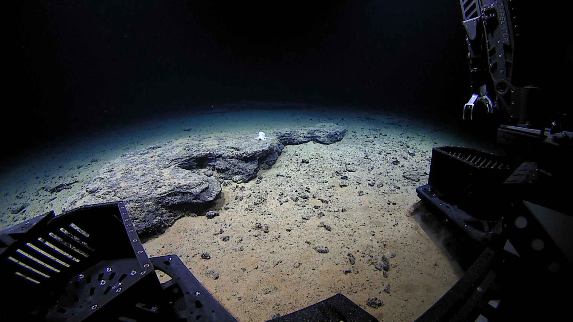ژرفای اقیانوس ها و دریاها