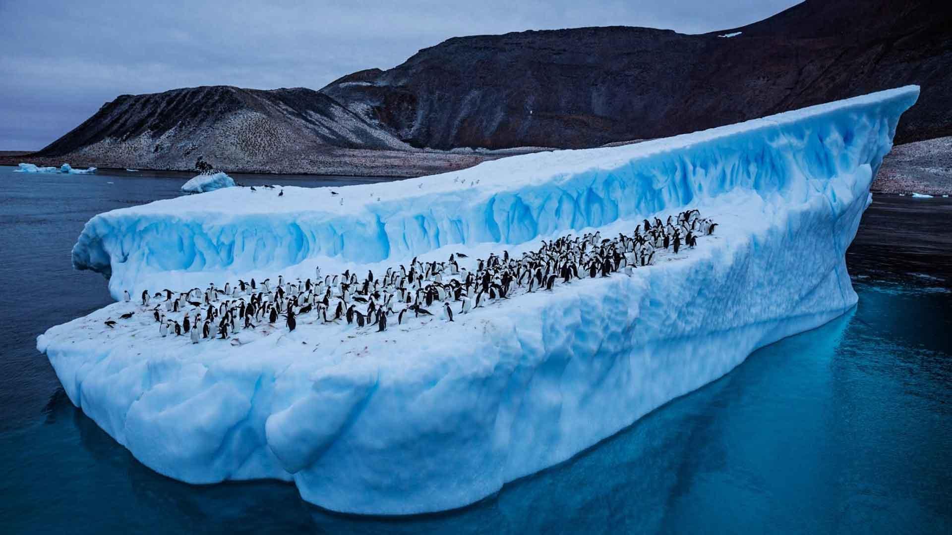 تاثیر گرم شدن اقیانوسها بر زندگی انسان ها