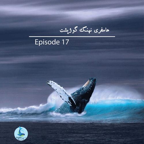 قسمت هفدهم - هامفری نهنگ گوژپشت